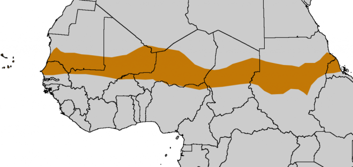 This map shows The SAHEL corridor through CHAD into Mali the path the Hebrew communities took from the east