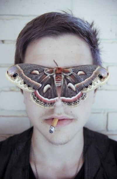 blind moth 3rd eye