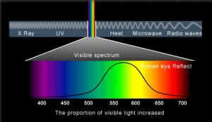 human visual spectrum