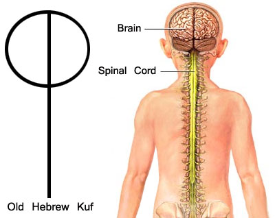 Old-Hebrew-Kuf
