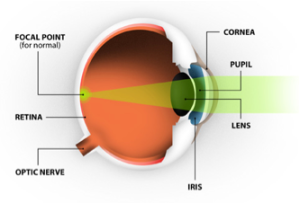 retina focal point