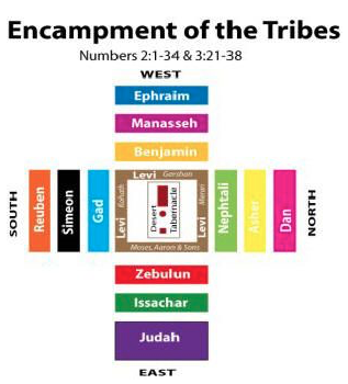 tribes formation
