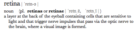 retina definition mac dictionary