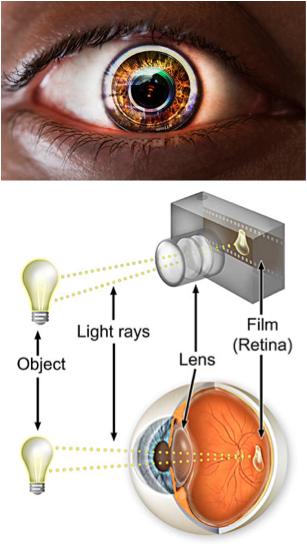 eye lens camera
