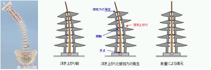 spinal cord pagoda