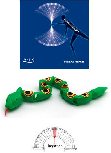 spine flex sepent