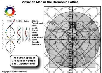 harmonic lattice