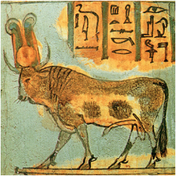 golden calf apis bull