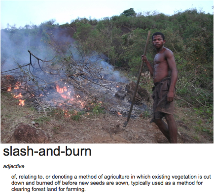 slash and burn 1