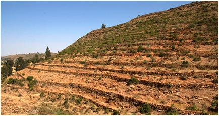 ethiopian terraces