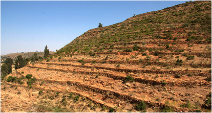 ethiopian terraces