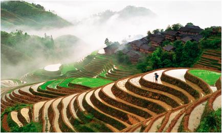 china terraces 1