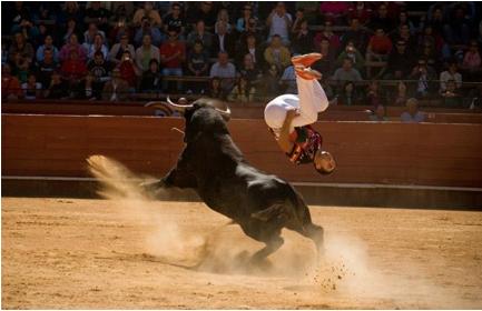 bull jump 2