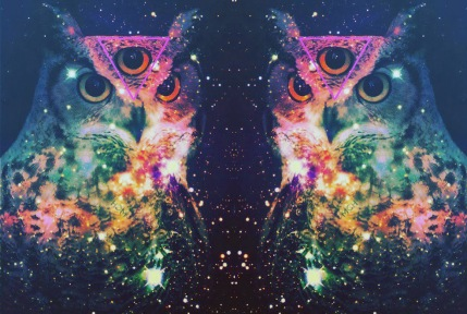 three-eyed-owl-meditation