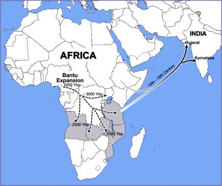 bantu expansion across indian ocean to india