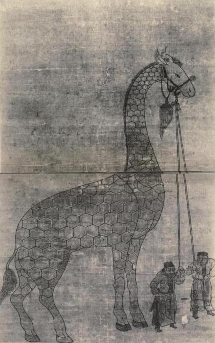 giraffe-in-china