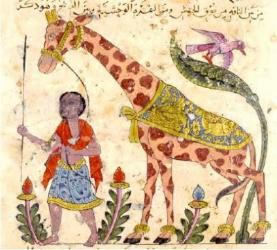 jahiz giraffe_