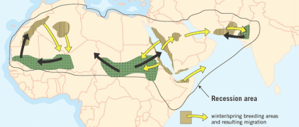 sahel migration routes