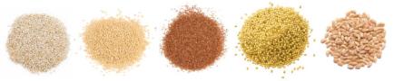 5 grains shennong