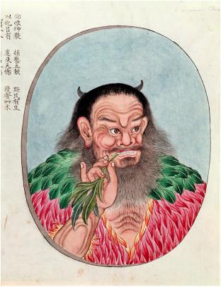 shennong herb tasting