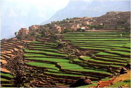 Terraced fields of Dira Yeme, Tanzania, Africa.