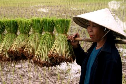 thailand-pics15-050_edit1