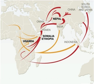 the-routes-of-african-ivory-and-rhino-horns-to-asia_16e3