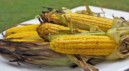 bbq-corn-on-cob abib aviv